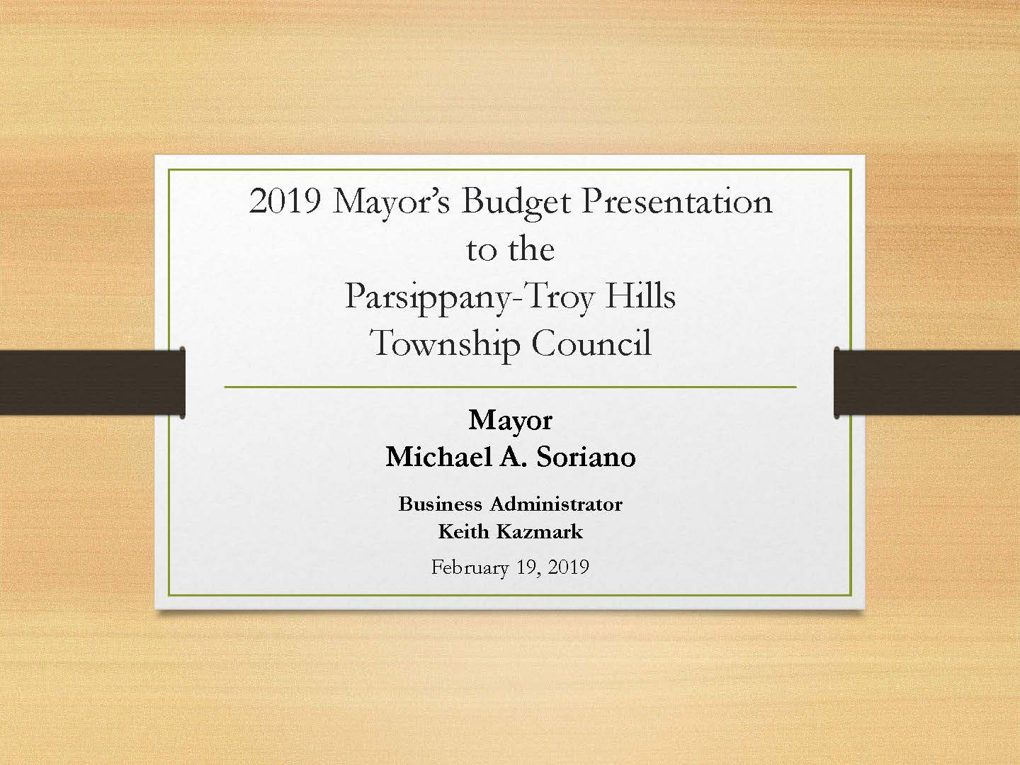 2019  mayor budget  introduction_pth GRAPH_Page_01