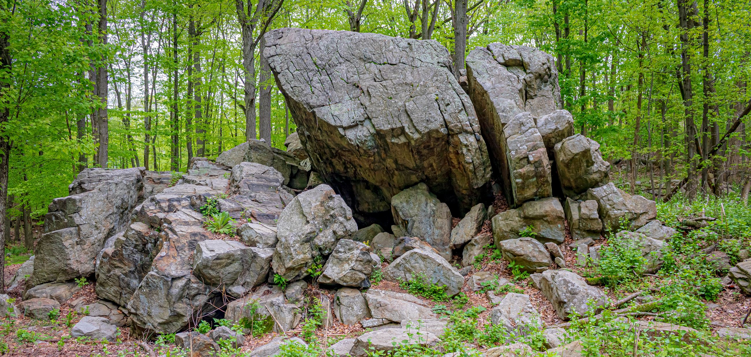Parsippany Rock Shelter