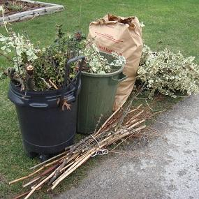 Image result for yard waste in container